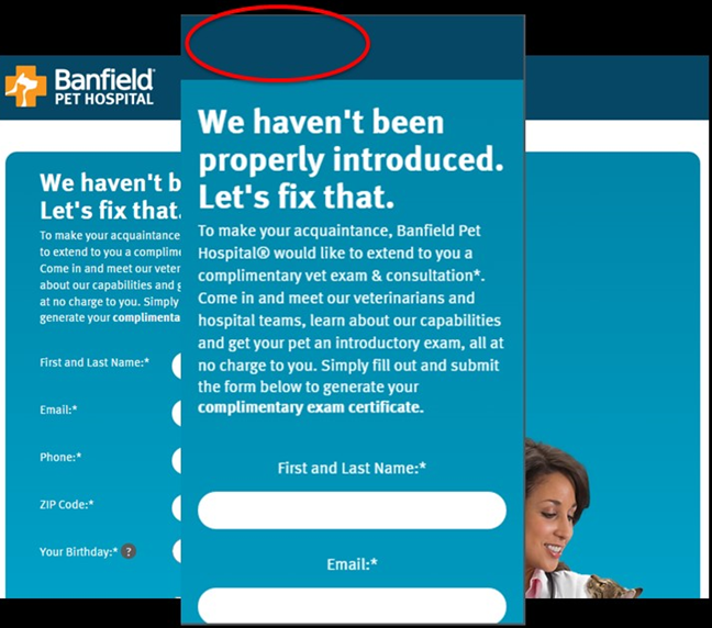 Banfield's responsive web design decided the company logo wasn't important on small-screens.