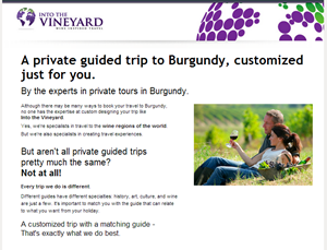 The Into the Vineyard luxury landing page