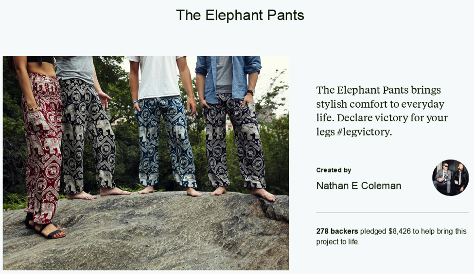 The Elephant Pants' quiz helped bring in the support of enough backers to launch their company