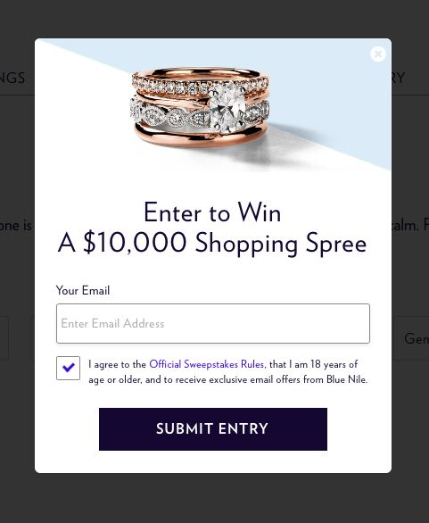 If your marketer's biggest concern is keeping in touch with newly-acquired shoppers, a simple opt-in to your newsletter will suffice. Be our guest, but why not give us your email address for a chance to win a $10K shopping spree at Blue Nile?