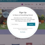 Wayfair's newsletter sign up form has a confusing call to action button text. What will happen after I press continue?