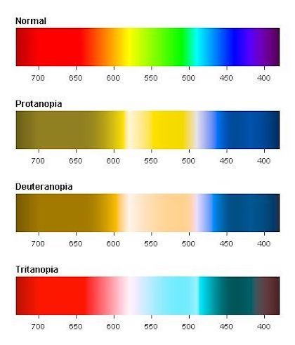 If red-green color blindness is the most prevalent - one in twelve men are color blind - should you rely solely on color to get your message across in your registration forms? Image source: Pinterest.