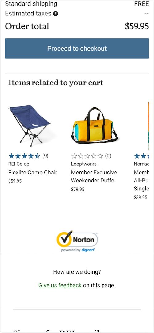 REI uses a Norton security badge to express the security of their site.