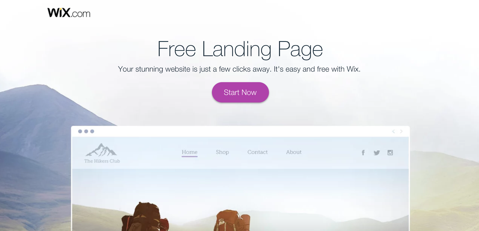 Thsi page does not tell the reader what a landing page is.