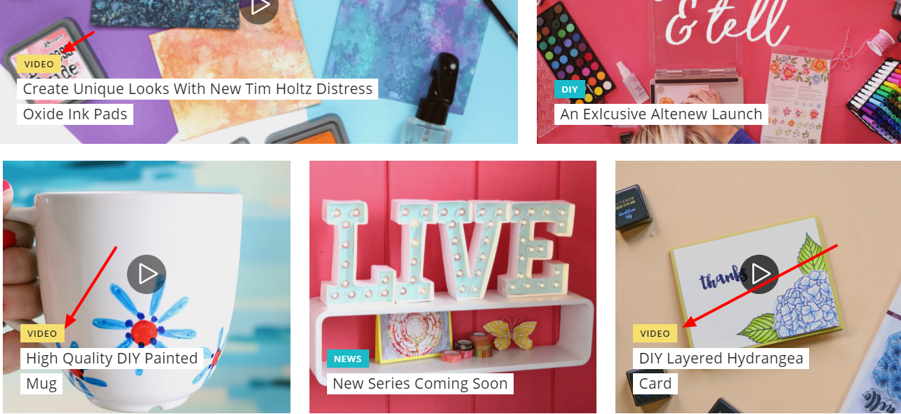 Video is key to Blitsy's strategy for selling niche products.