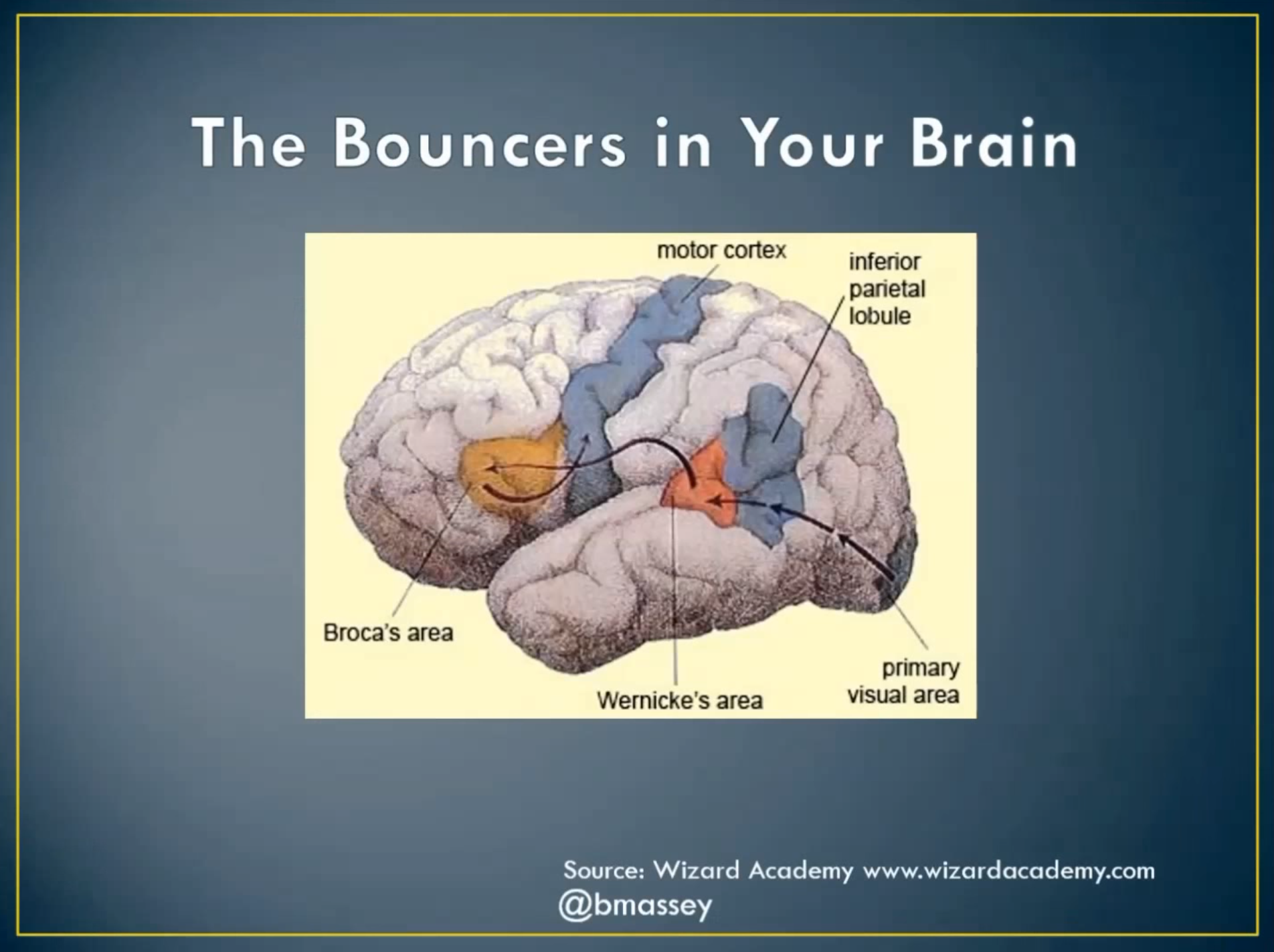 Bouncers In Your Brain